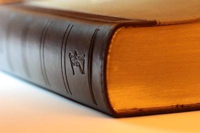 advocaat-in-Hoorn